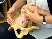 Simulation dystocie des épaules